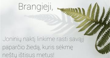 Birželio 24 d. – Joninės (Rasos)